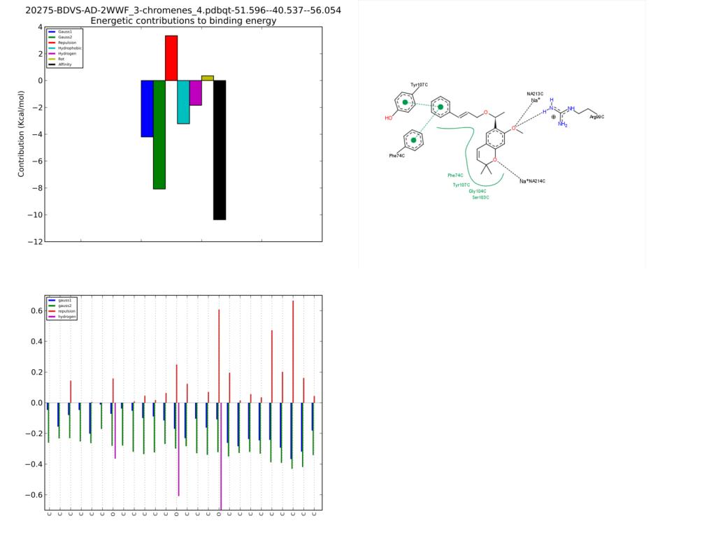20275-BDVS-AD-2WWF_3-chromenes_4.pdbqt-51.596--40.537--56.054Pack